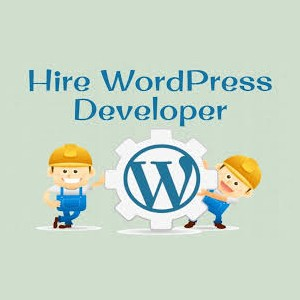 Advantages of hiring a WordPress developer